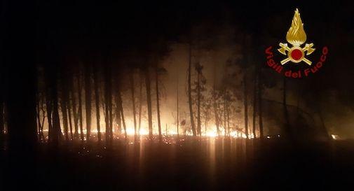 incendi bibione