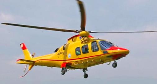 Viene punto dai calabroni mentre si trova in giardino, trasportato d'urgenza in ospedale con l'elicottero
