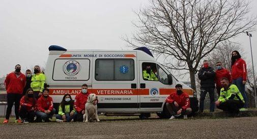 I volontari dell'associazione FISA con la nuova ambulanza veterinaria