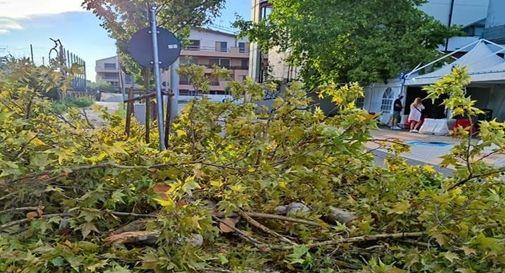 I danni del maltempo di ieri a Mogliano Veneto