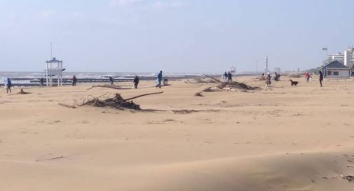 Jesolo, un'altra giornata di pulizie per rimettere a nuovo la spiaggia