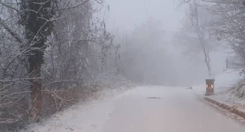 fregona neve cansiglio
