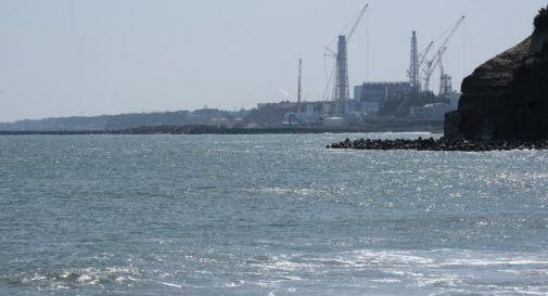 Fukushima, l'acqua contaminata finirà in mare: la decisione di Tokyo
