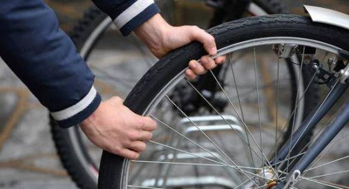 Ruba due biciclette per un bottino da 1.500 euro, ma viene scoperto