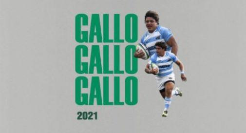 Thomas Gallo