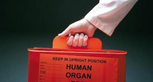 giornata donazione organi
