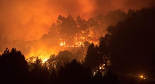 Incendio Gran Canaria, 5mila evacuati