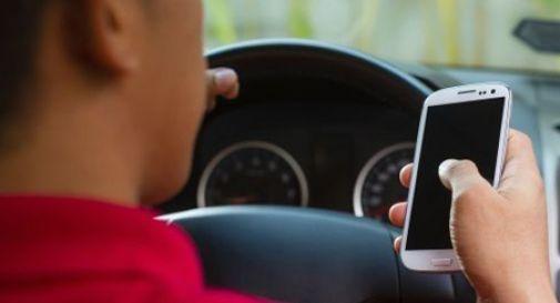 A Conegliano si guida senza assicurazione, né revisione. Ma col telefono