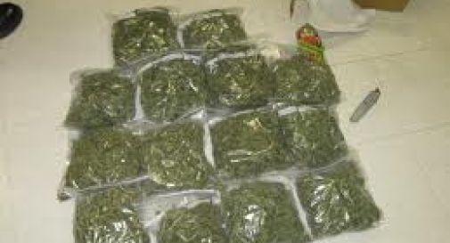Dalla Grecia a Venezia, con 15 Kg di marijuana