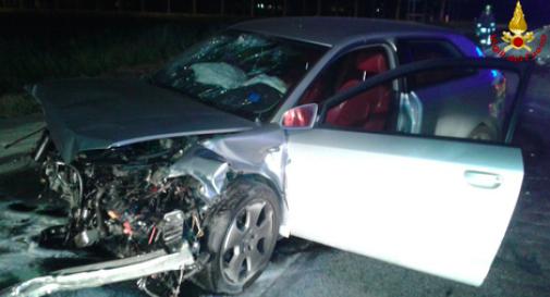 l'incidente del maggio 2017 a San Donà di Piave
