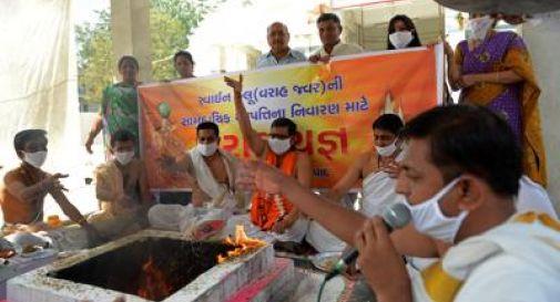 Allarme in India per l'epidemia di influenza 'suina'