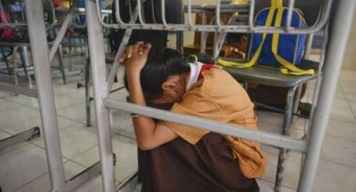 L'Indonesia trema, scossa 7.7 nelle Molucche