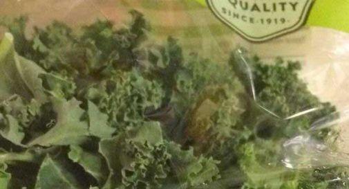 Mamma di due bambini trova un condom usato nella busta di insalata