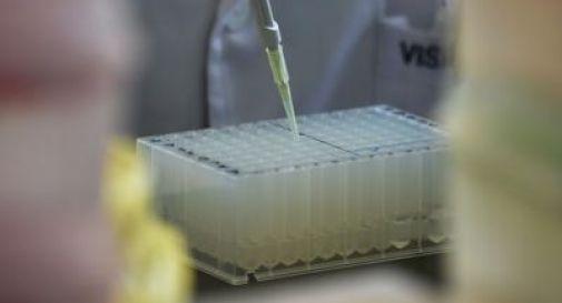 Fuga di batteri da laboratorio in Cina, infettate oltre 3mila persone