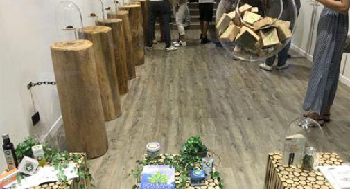 E' arrivato a Conegliano il primo punto vendita di cannabis legale