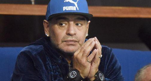 Maradona, avvocato infermiera: