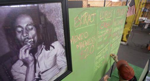 Marley: il nome del primo pacchetto (legale) di spinelli