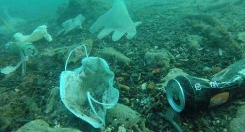 Mascherine e guanti inquinano i fondali marini