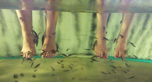 giocattoli sessuali massaggi orientali video