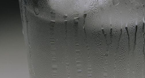 La SLA in 10 punti - Ice Bucket Challenge