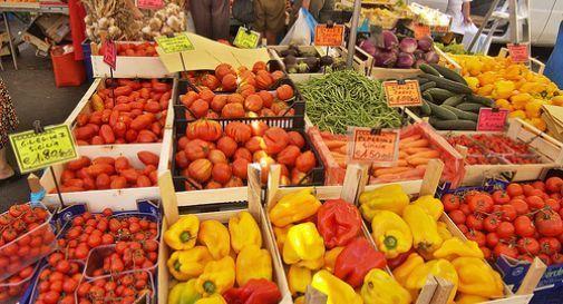 Torna lunedì il mercato a Vittorio Veneto, il sindaco ha firmato l'ordinanza
