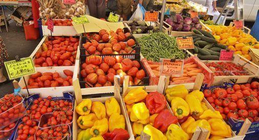 mercato agricolo a Pieve di Soligo