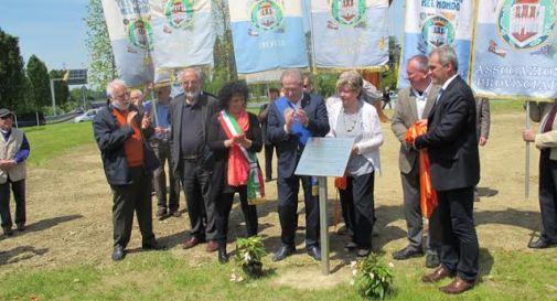 Inaugurati gli alberi dei trevisani nel mondo oggi for Veneto arreda 3
