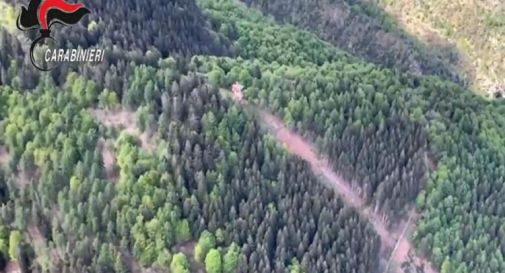 Funivia caduta sul Mottarone, italiani e stranieri: chi sono le 14 vittime