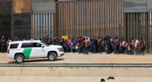 Coccodrilli per bloccare il flusso dei migranti dal Messico, ecco l'idea di Donald Trump