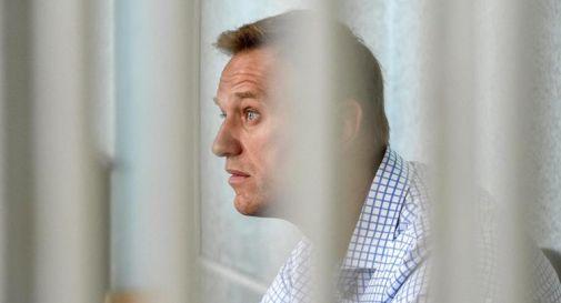 Navalny, Ue chiede rilascio: