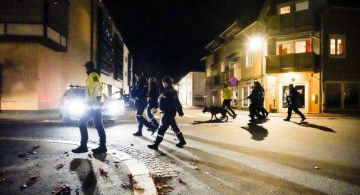 Norvegia, intelligence: