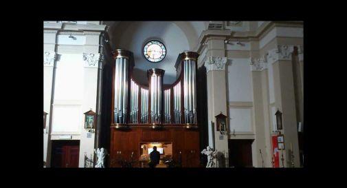 organo Zeni (nella foto)
