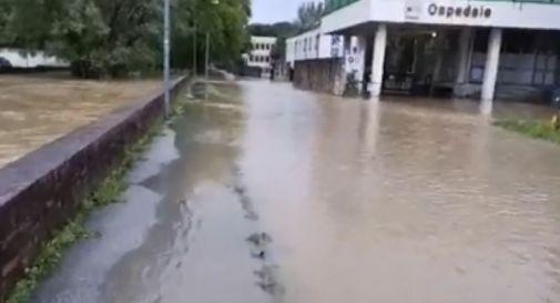 Esondazioni, odori e sversamenti: l'Avenale è un problema
