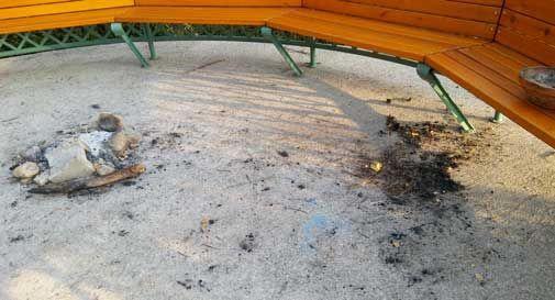 parco papadopoli vandali fuoco