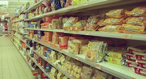 """Obbligo etichetta origine grano per la pasta, Coldiretti Treviso: """"Una conquista"""""""