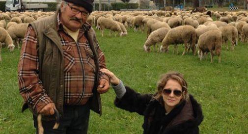 Dieci minuti coi pastori e le pecore oggi treviso - La pagina della colorazione delle pecore smarrite ...