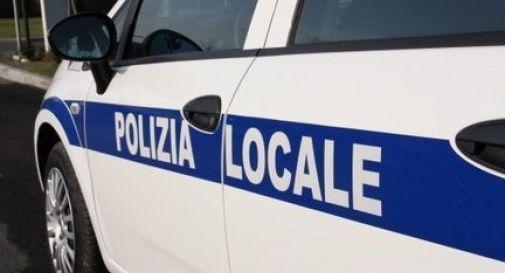 Sequestrate 80 confezioni di alimentari con etichettatura fuori legge, sanzionato per 350euro  un commerciante di Villorba