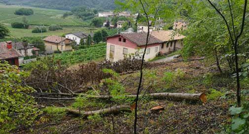 Oltre 7mila euro in una decina di giorni: la raccolta fondi copre tutti i risarcimenti che le famiglie devono versare