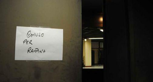 offerta speciale scarpe da skate offrire sconti Passamontagna e pistola, rapina a Veneto Banca di Conegliano ...