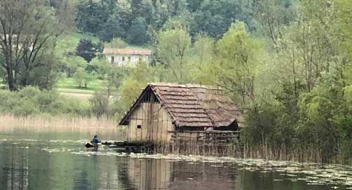 La pioggia ingrossa il lago di Revine, l'acqua tocca le palafitte del Livelet