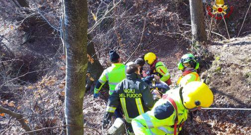 Cade mentre taglia un albero: boscaiolo soccorso dall'elicottero