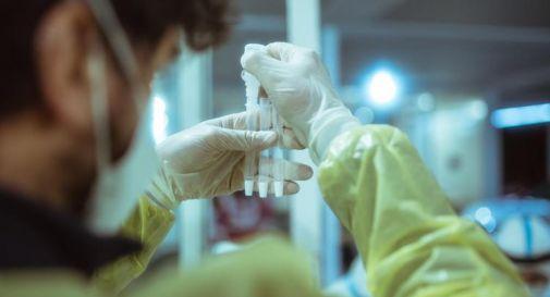 Covid e origine virus, Cina nega a Oms altre indagini