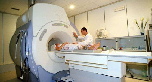 Troppo obeso per la risonanza vada dal veterinario attrezzato per grossi animali oggi - Clinica divi castelfranco ...