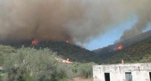 Incendi Sardegna, arrivati canadair Francia e Grecia