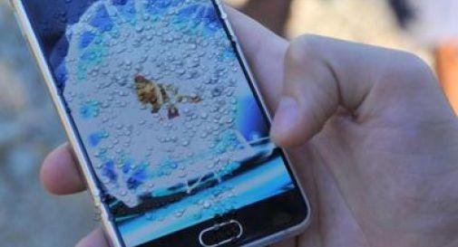 Lo smartphone ti cade in acqua? Fai così