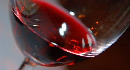 A Vicenza impazza l\'aperitivo autoctono, il Tai sfida lo ...