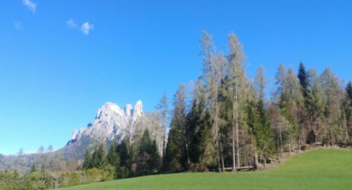 Studenti del Planck sulle Dolomiti con il Cnr per monitorare i cambiamenti climatici