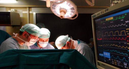 Trapianti, testato impianto rene di maiale a uomo: nessun rigetto
