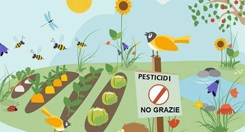 """Domenica 30 maggio è la """"Giornata Stop Pesticidi"""""""