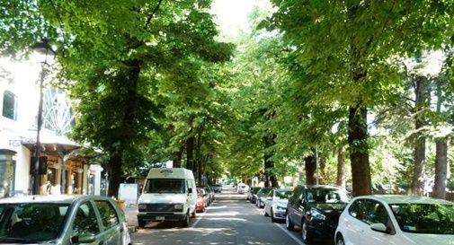 Viale della Vittoria a Montebelluna